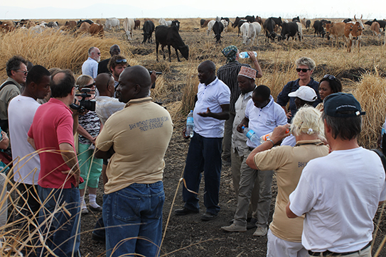 Exkursion in die Region Bahi, nördlich der Hauptstadt Dodoma, wo an zahlreichen Stellen Uranerze entdeckt worden. Seit einiger Zeit läuft dort die Erkundung, ob ein Abbau möglich ist.